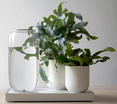 Pikaplant self watering systems