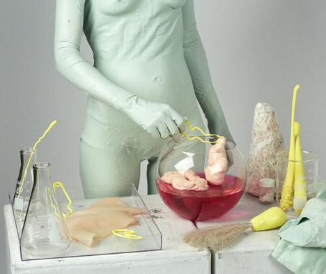 Vivorium by Ali Schachtschneider