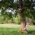 CanopyStair is a spiral staircase that straps around any tree trunk