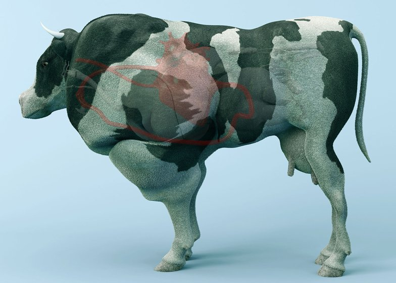The Cow of Tomorrow by Paul Gong