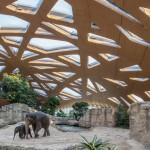 Zurich Elephant House boasts a domed wooden roof and swimming pools for animals