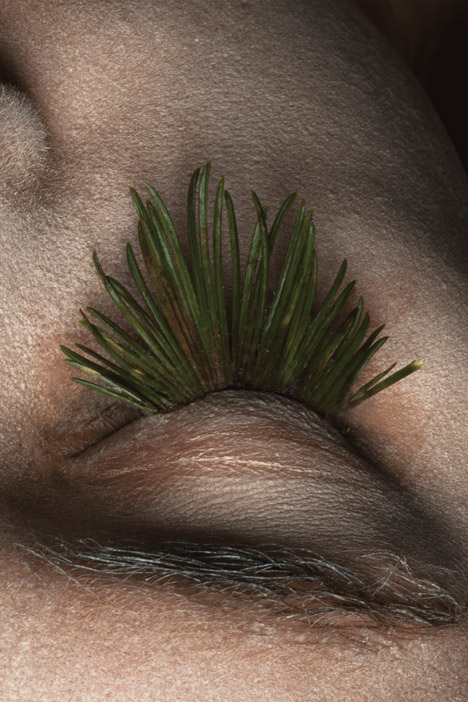 Natural eyelashes by Mary Graham