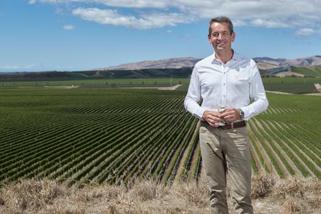 Patrick Materman overlooking Brancott Vineyard