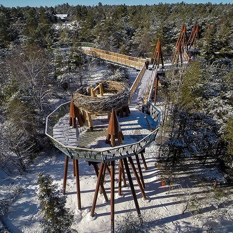 Wild Walk is a treetop trail that rises above a forest in Upstate New York
