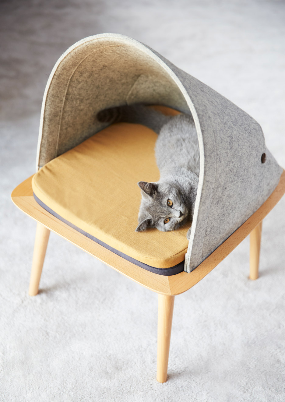 Fabulous Cocoons For Cats Feature In Meyous Debut Furniture Collection Customarchery Wood Chair Design Ideas Customarcherynet