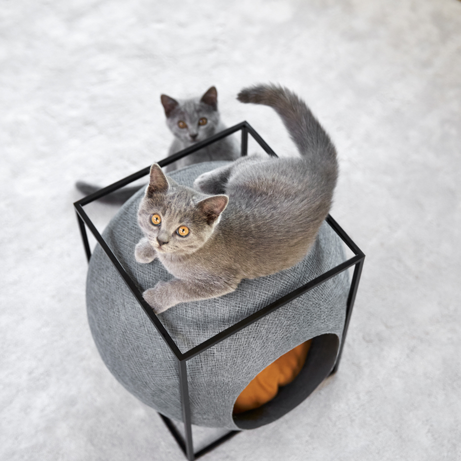Furniture-for-cats_Meyou-Paris_dezeen_