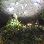 Lowline Lab demonstrates viability of an underground New York park