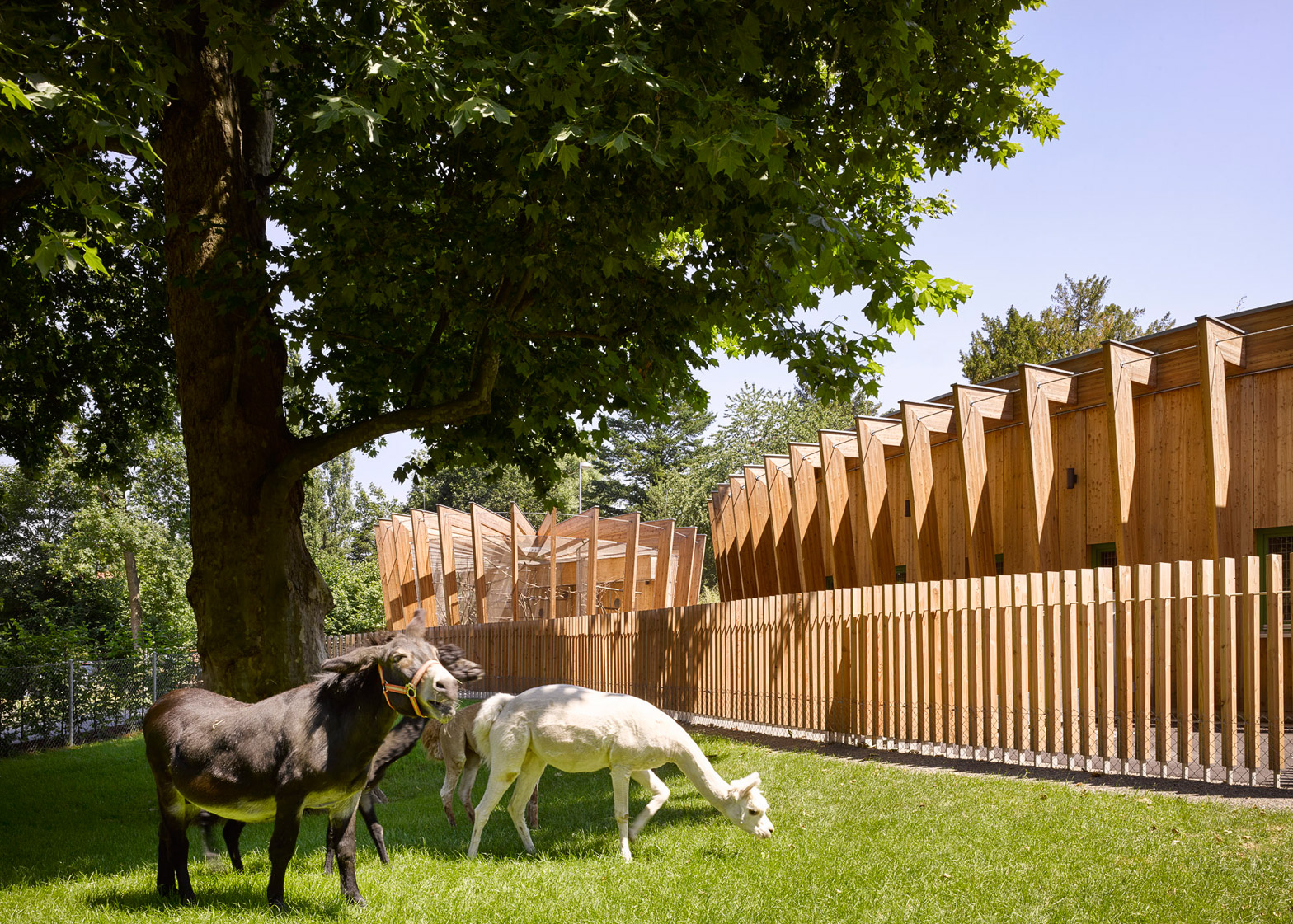 Petting Zoo by Kresings Architektur