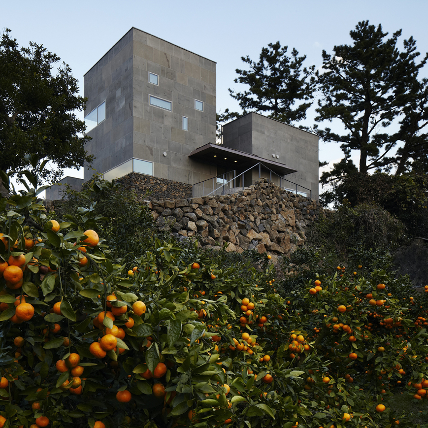 Stone residence by Doojin Hwang stands among citrus trees on Jeju island