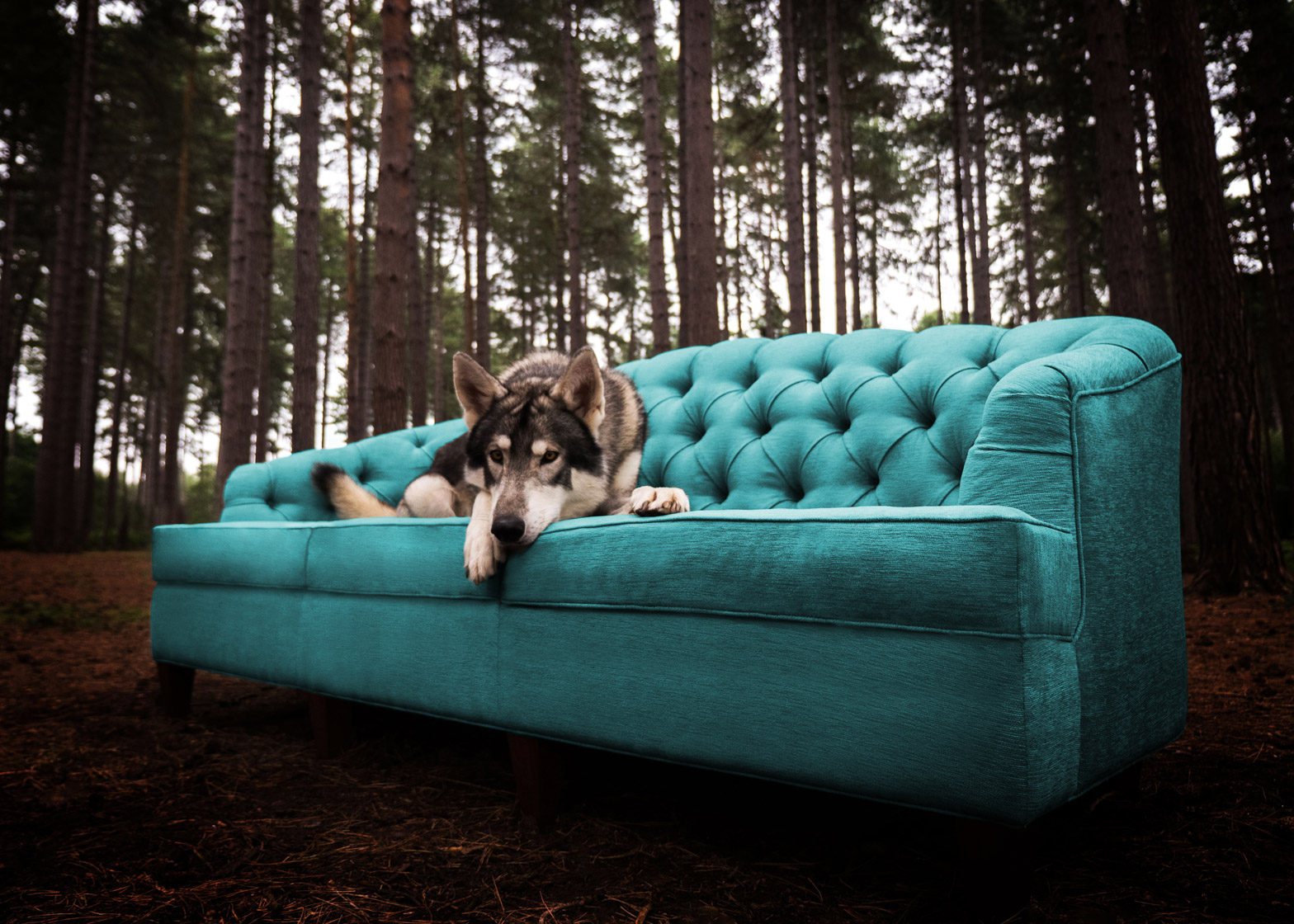 Luxury outdoor furniture by Coco Wolf