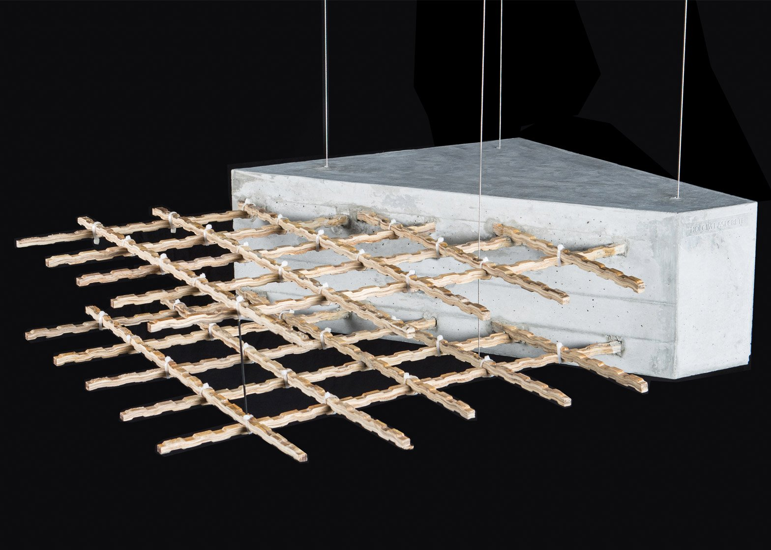 Dirk Hebel on bamboo at World Architecture Festival 2015