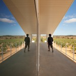 Ribeiro de Carvalho updates century-old Portuguese winery with new metal-clad building