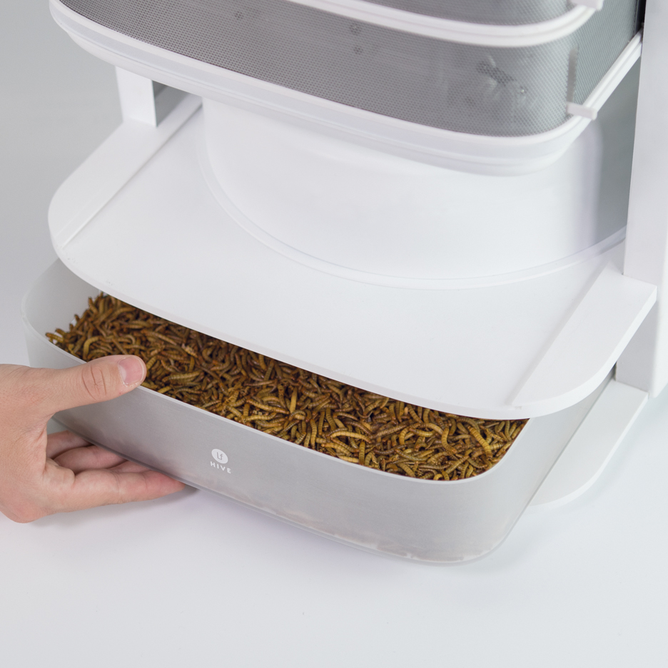 Katharina Unger's Livin farm lets users raise edible worms at home
