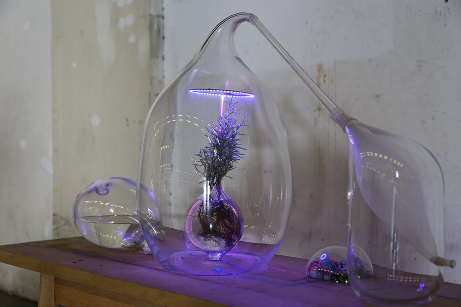 Vegetalize Air Culture Lab by Sarah Daher for Dutch Design Week 2015