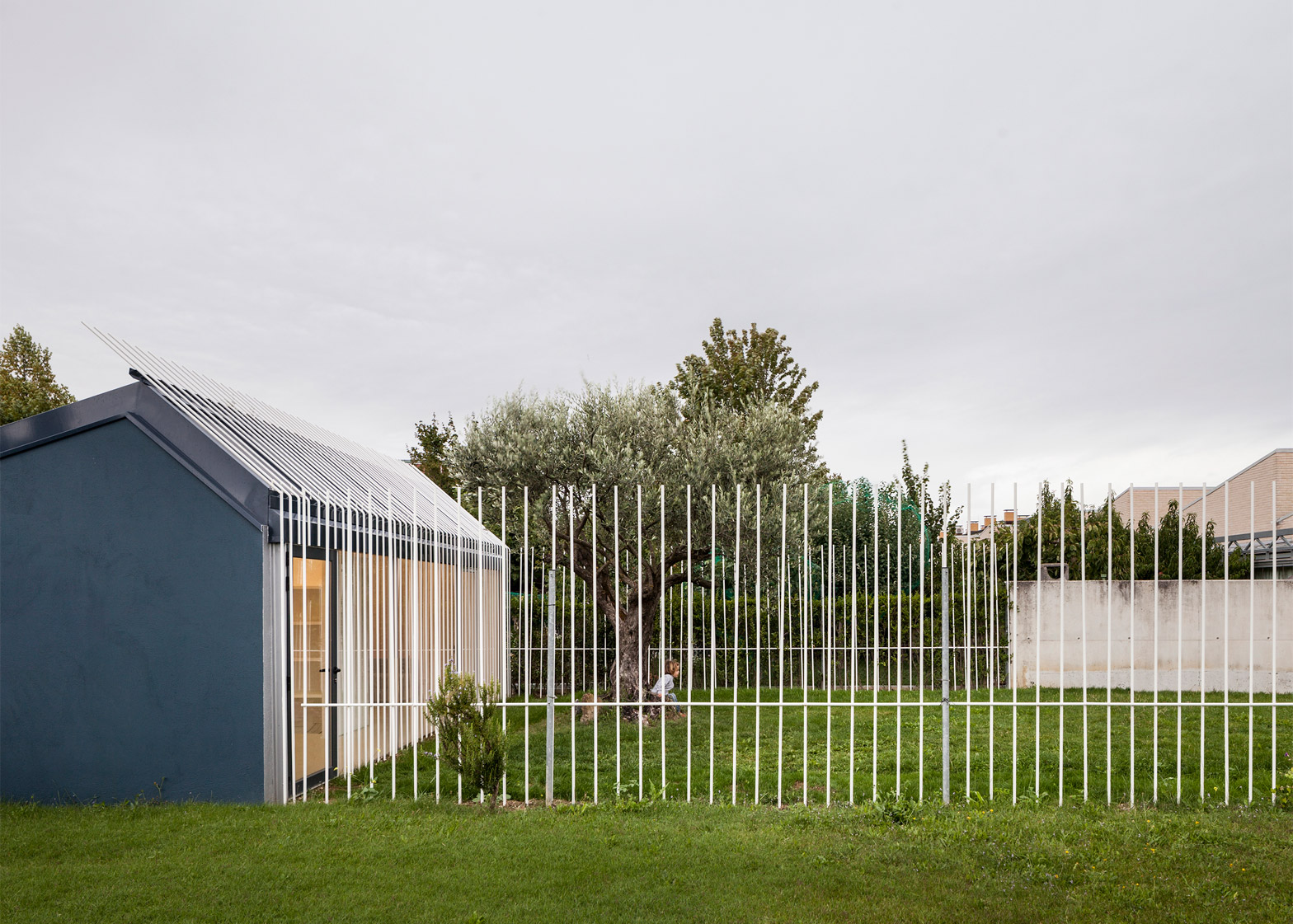 House for a man and a tree by Taller Basico