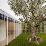 Taller Basico de Arquitectura completes House for a Man and a Tree in Spain
