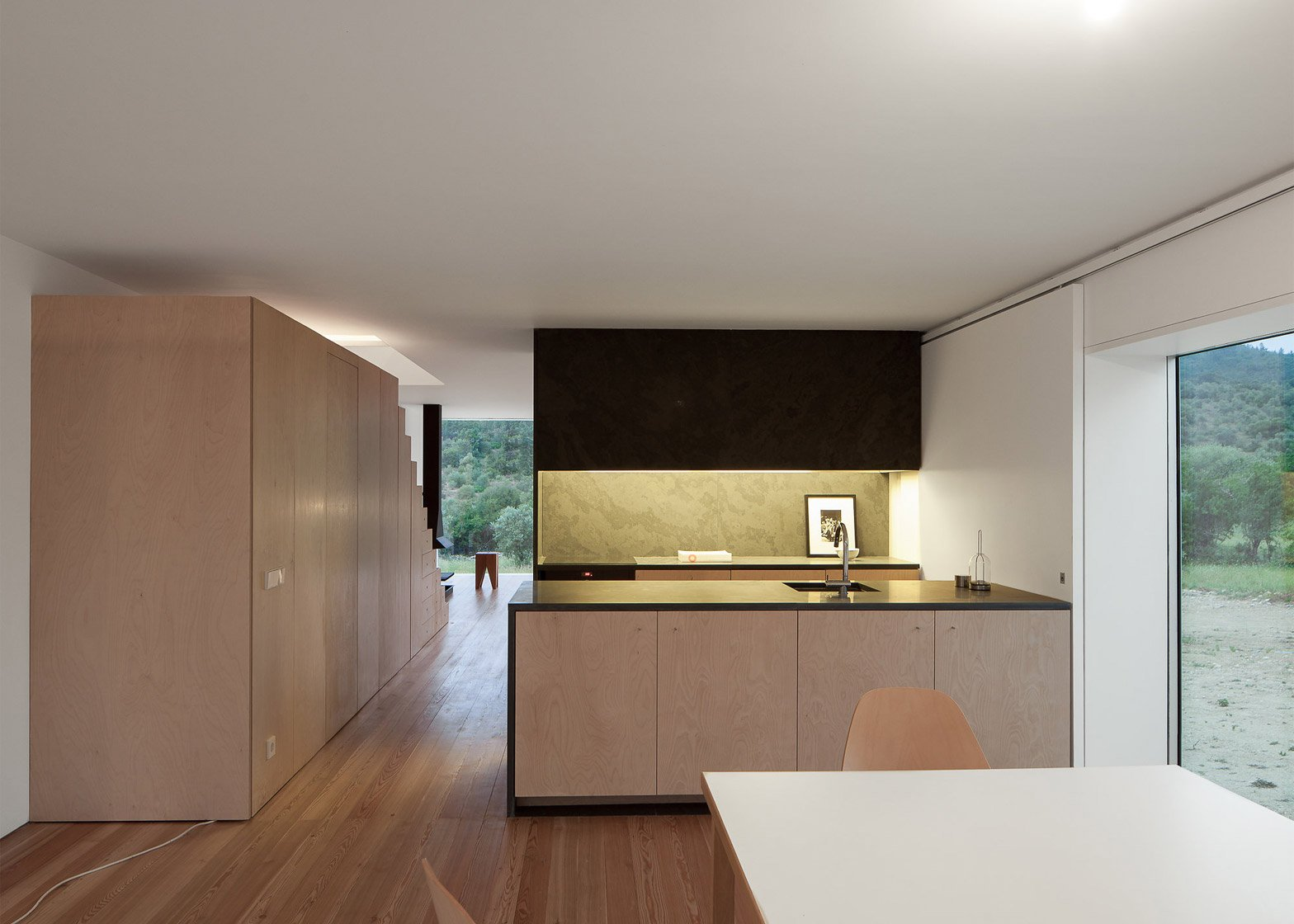 House in Fonte Boa by Joao Mendes Ribeiro