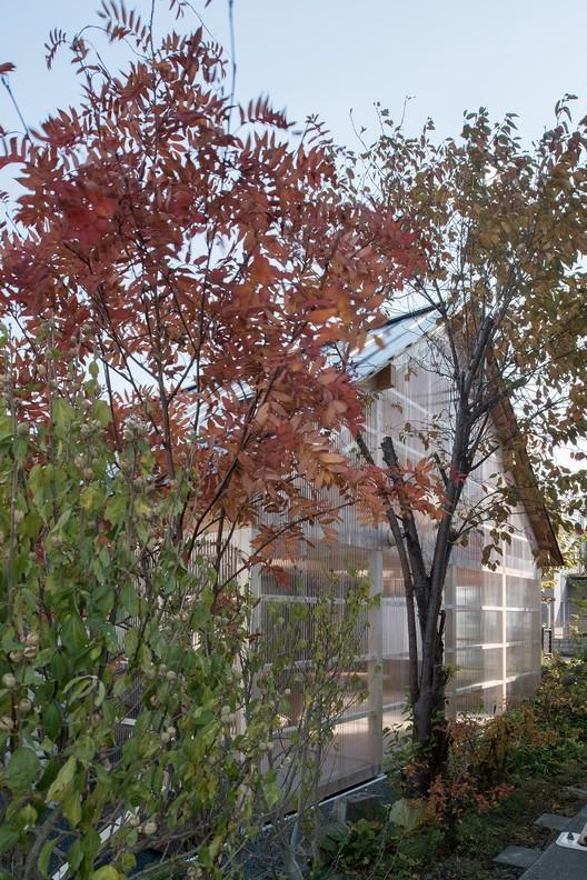 House-in-Skinkawa_Yoshichika-Takagi_Sapporo_Japan_greenhouse_polycarbonate_dezeen_936_13