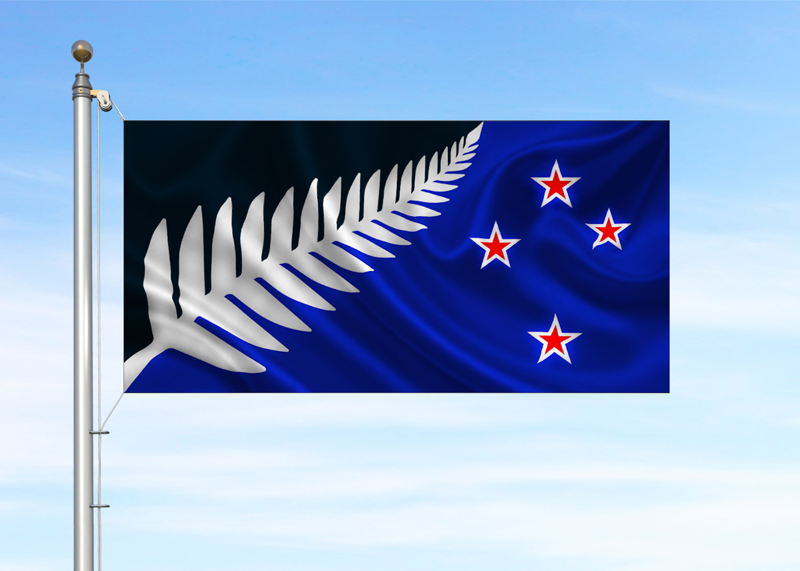 New Zealand Silver Fern flag by Kyle Lockwood