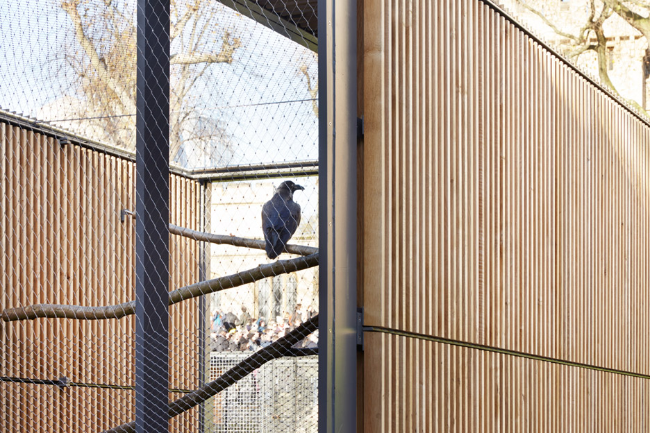Ravens' enclosure by Llowarch Llowarch Architects