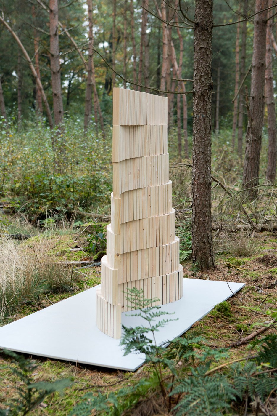 Reconfiguration of a tree by Studio Thomas Vailly