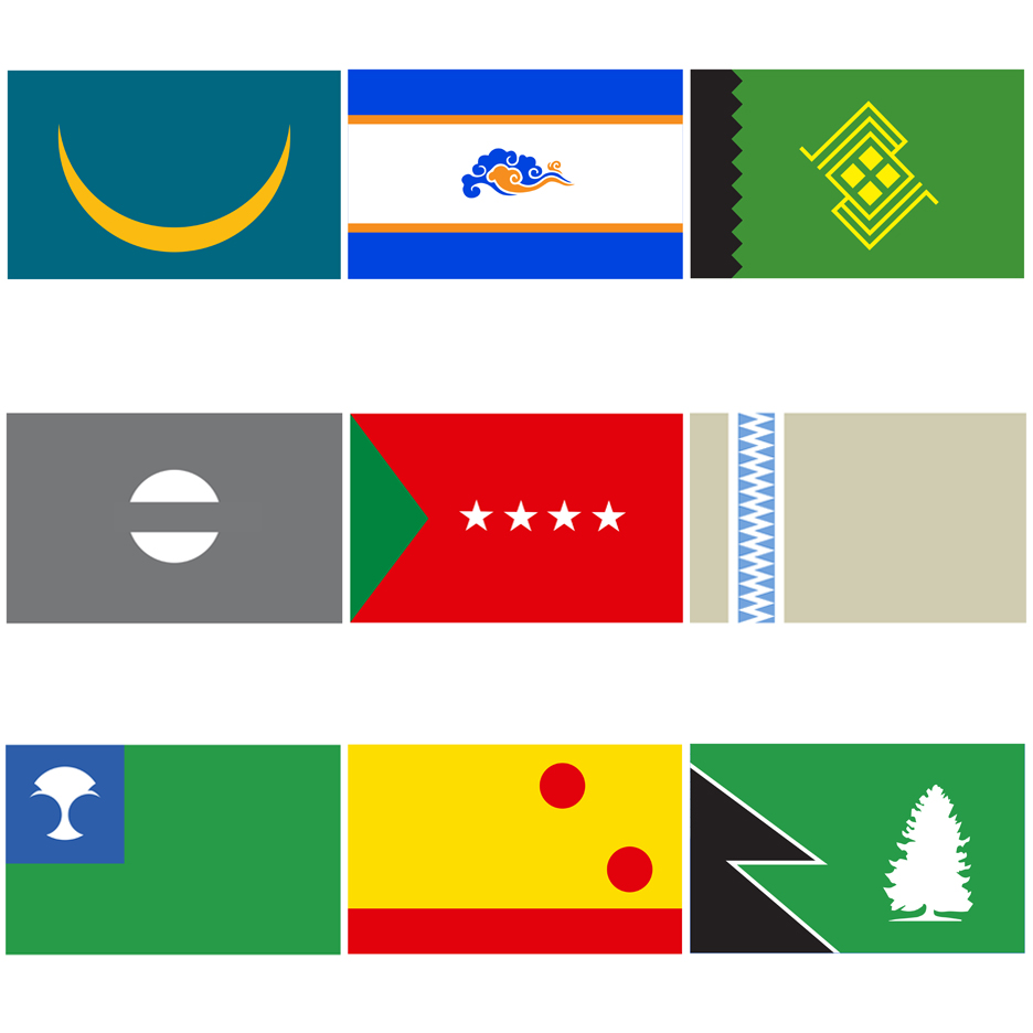 Star Wars flags by Scott Kelly