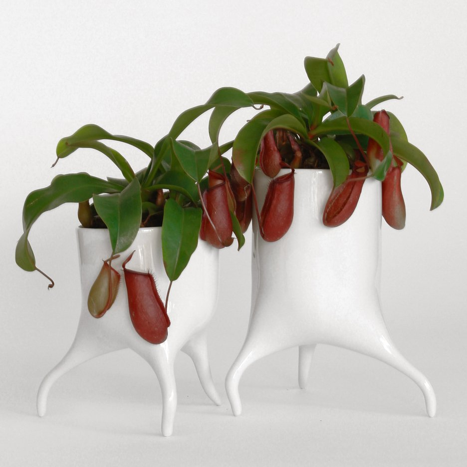 Tim van de Weerd's Carnivora plant pots designed to look like they could wander off