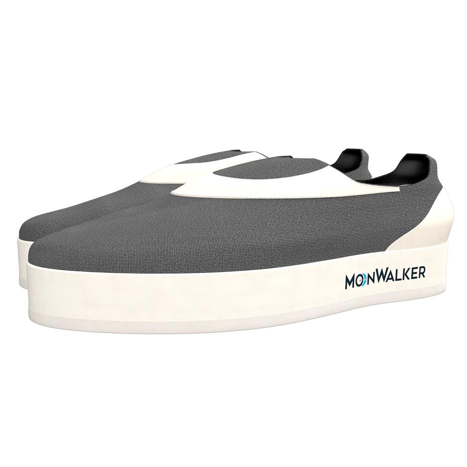 2016 MoonWalker