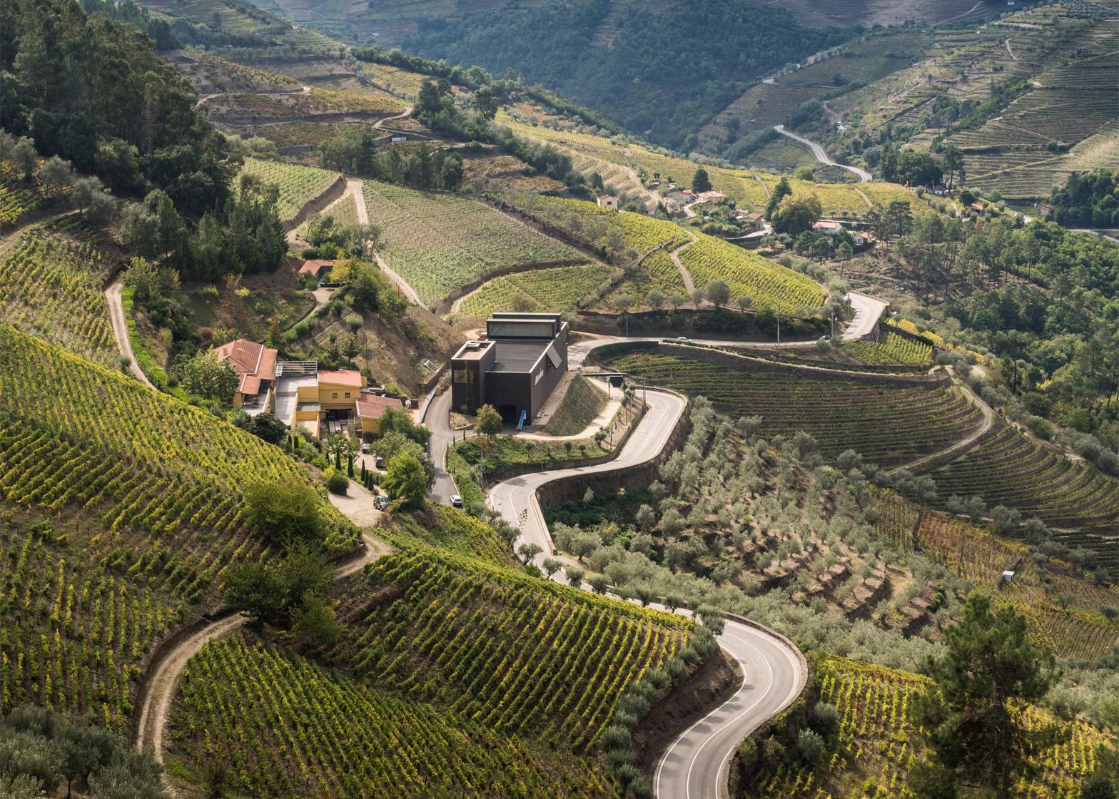 Winery by Belem Lima