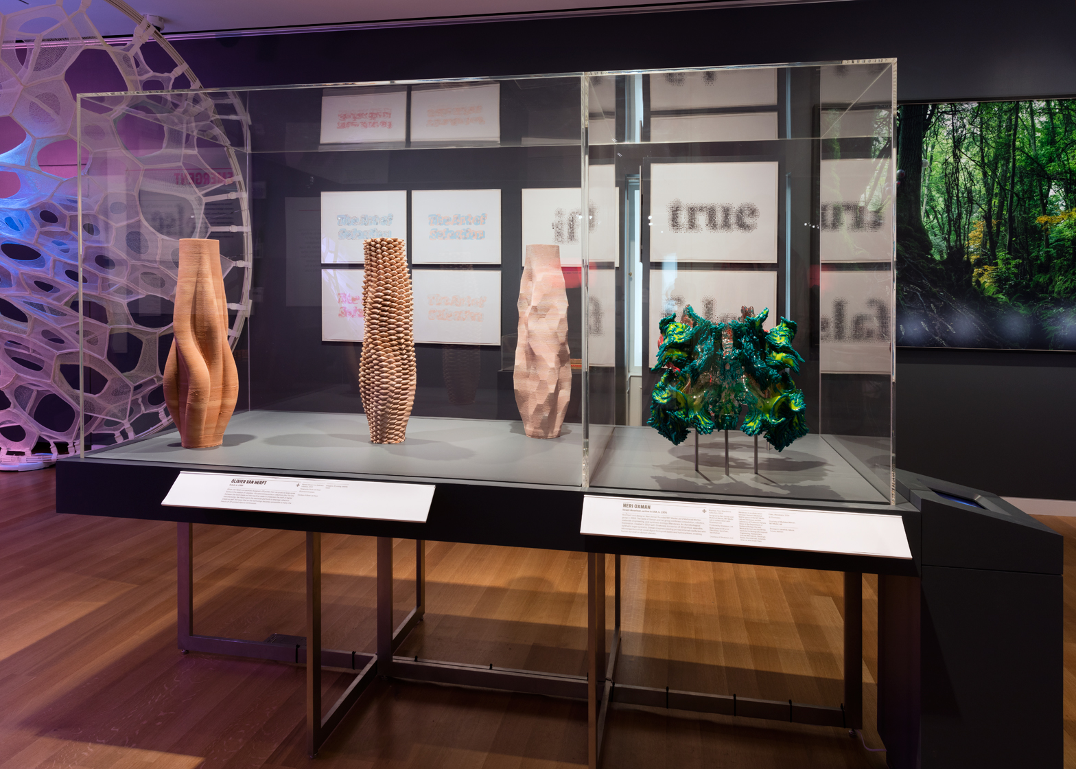 The Cooper Hewitt Design Triennial exhibition Beauty. Photograph by Matt Flynn