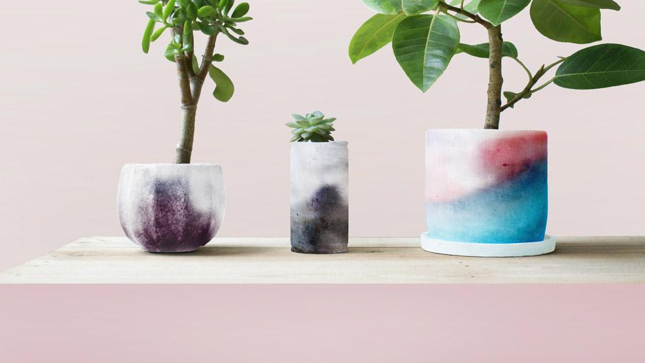 Lexus Design Award 2016 Plants-Skin by Hiroto Yoshizoe