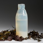 Ari Jónsson uses algae to create biodegradable water bottles