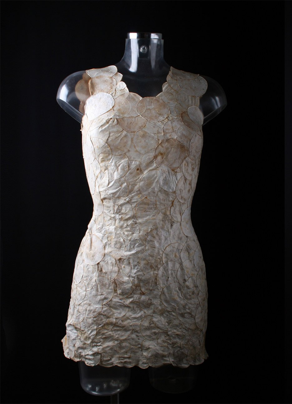 Aniela Hoitink creates dress from mushroom mycelium