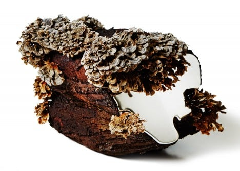 Polypore by Japanese artst Azuma Makoto for Capsule #5 exhibition at Chamber in New York, USA