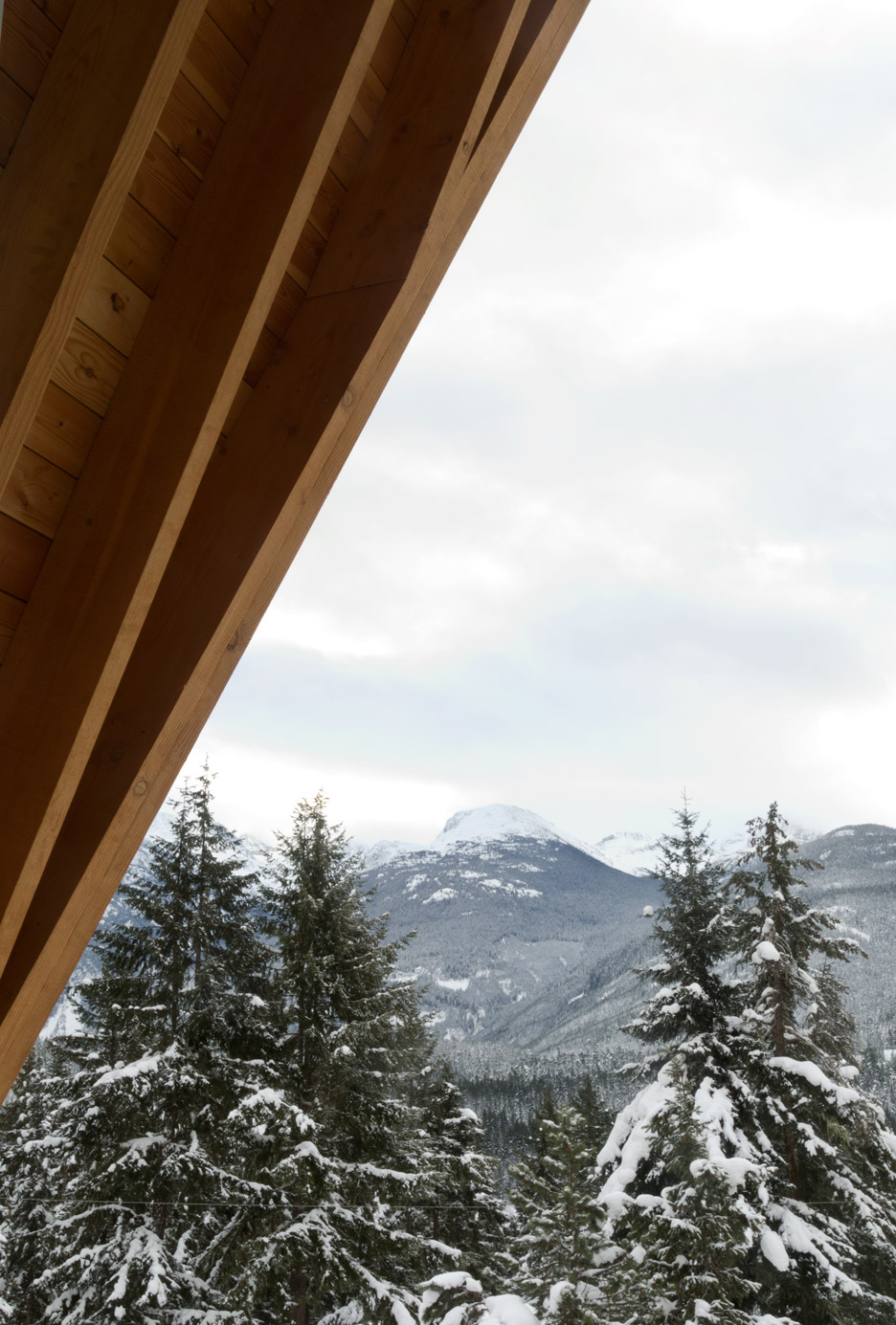 Whistler Cabin by Scott and Scott Architects
