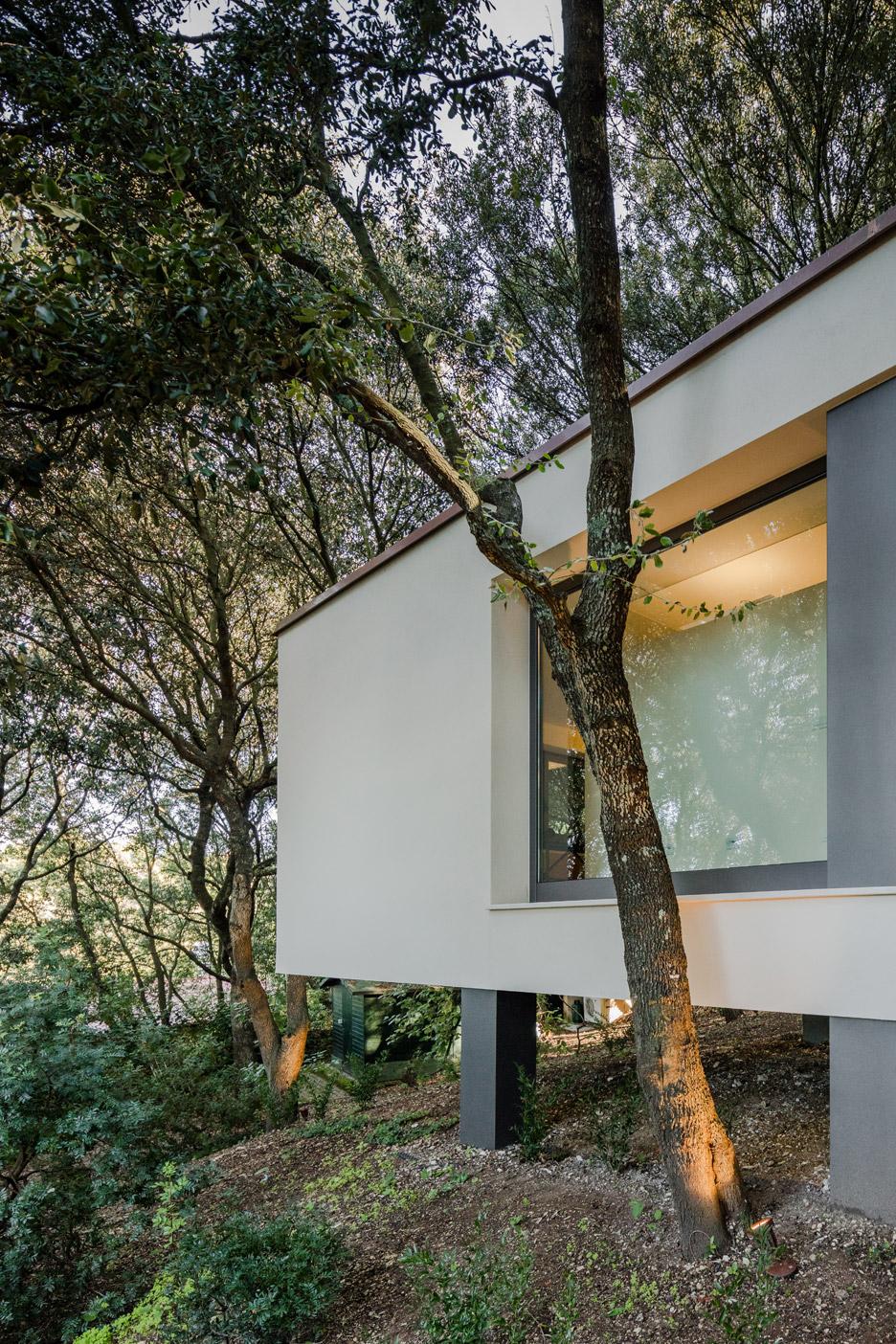casa-nel-bosco-officina29-architetti-house-in-the-woods-joao-morgado_dezeen_936_2