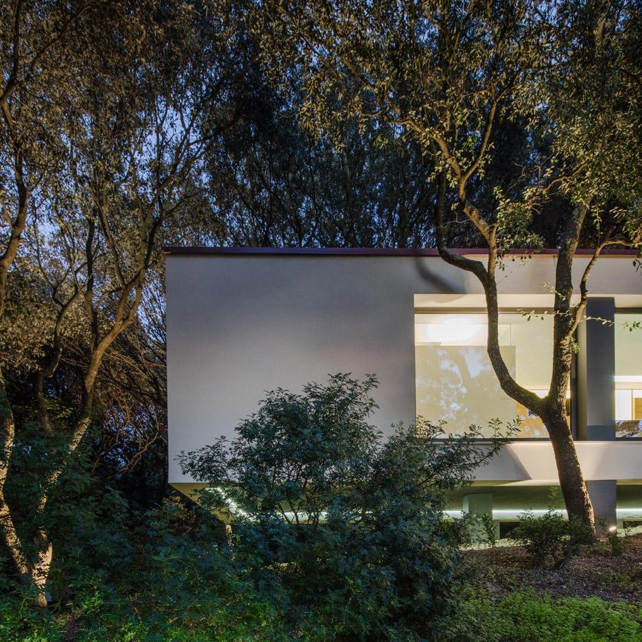 casa-nel-bosco-officina29-architetti-house-in-the-woods-joao-morgado_dezeen_936_59