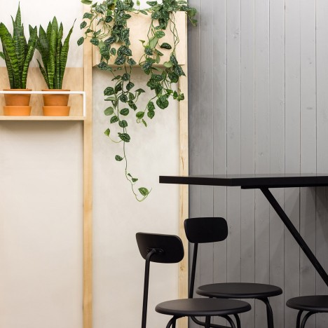 Baranova Pokorsky creates simple plant-filled interior for St Petersburg coffee shop