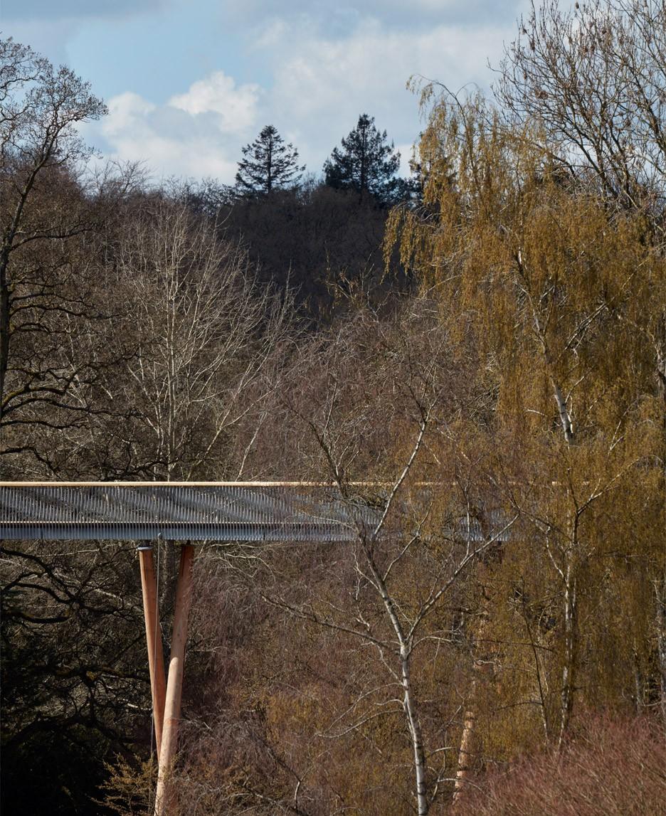 Westonbirt Arboretum walkway by Glenn Howells Architects