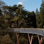Sinuous treetop walkway by Glenn Howells Architects opens at Britain's national arboretum