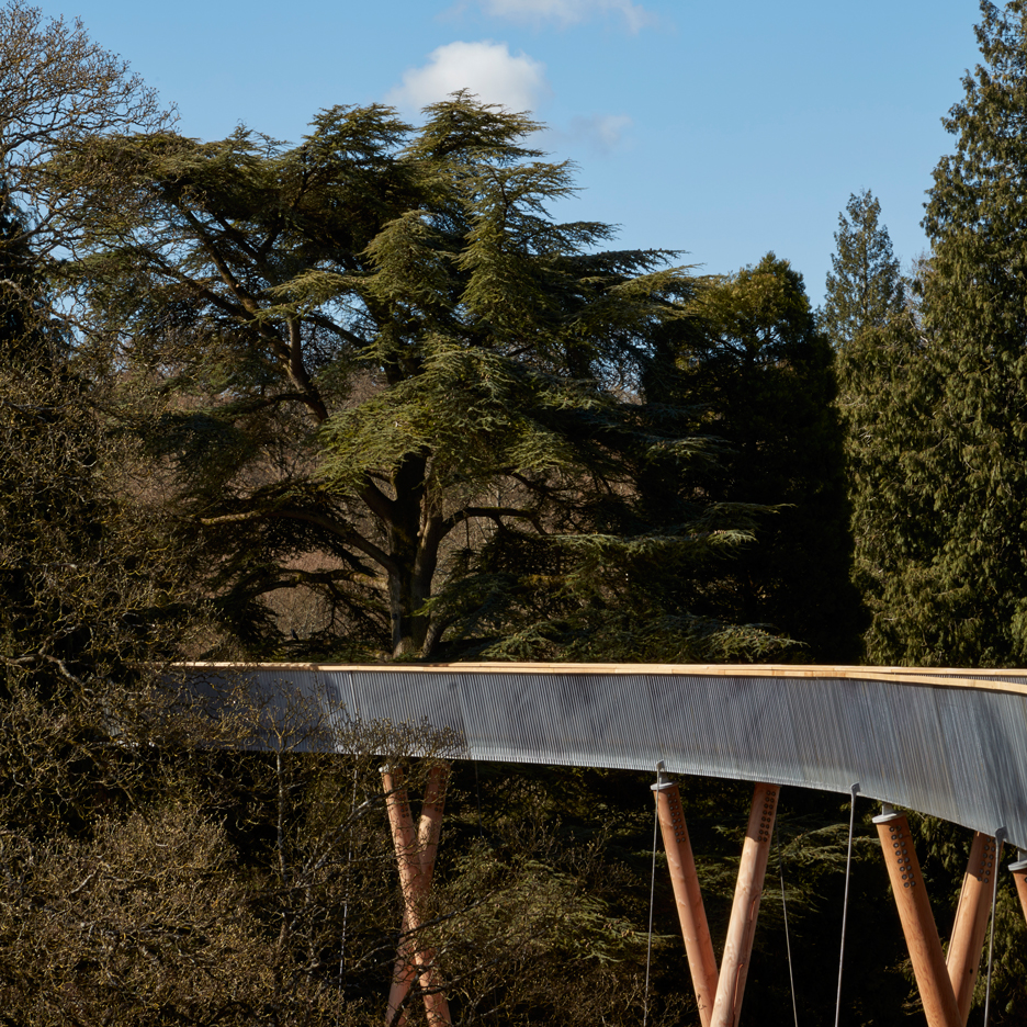 Westonbirt Arboretum walkway by Glenn Howells Architects