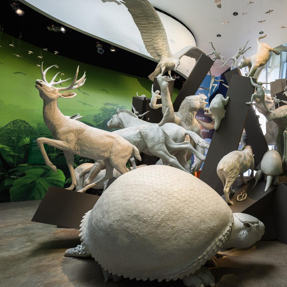 bruce mau biomuseo panama_dezeen_sq