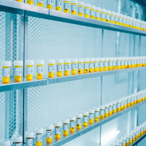 Fast Food Aid is a laboratory-like shop that serves vitamin supplements to junk food lovers