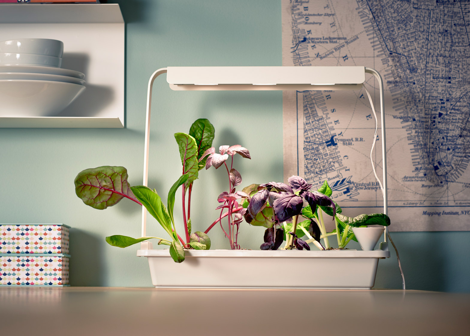 Ikea launches indoor garden that can grow food all year for Indoor gardening videos