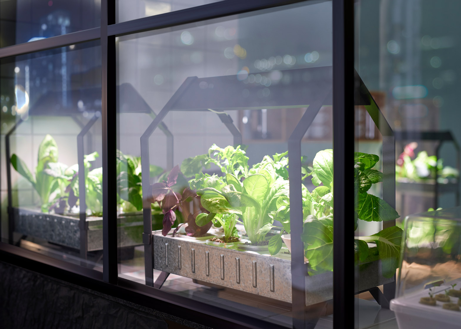 Ikeas indoor gardening kit to give apartment dwellers a for Indoor gardening videos