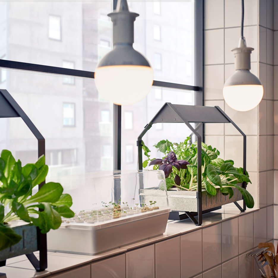 Ikea moves into indoor gardening with hydroponic kit sig nordal jr for Ikea hydroponic indoor garden kit
