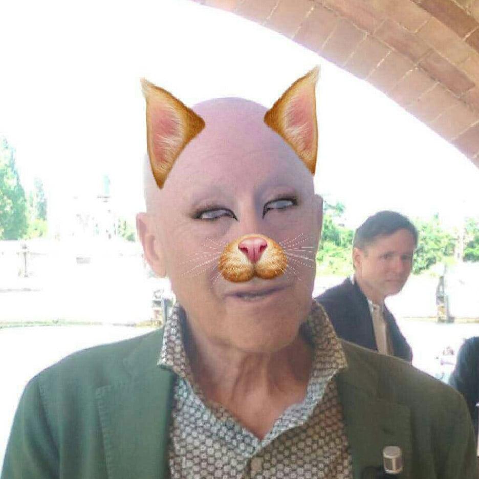 Norman Foster Snapchat Dezeen Venice Architecture Biennale 2016