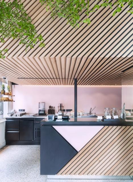 Standard Studio adds living tree to interior of Amsterdam juice shop