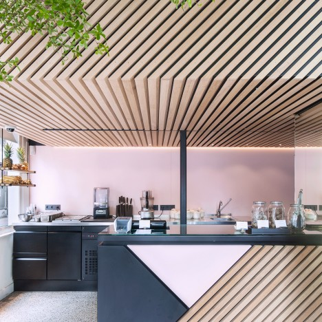 Standard Studio adds living tree to interior of Amsterdam juice shop