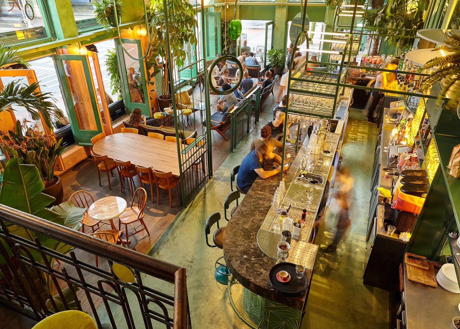 Studio Modijefsky Fill An Amsterdam Bar With Rainforest Foliage